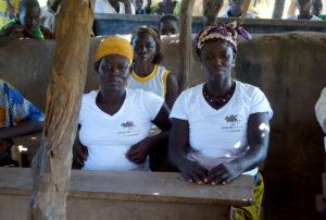 Une réunion avec les villageois, village de Nagou, Togo